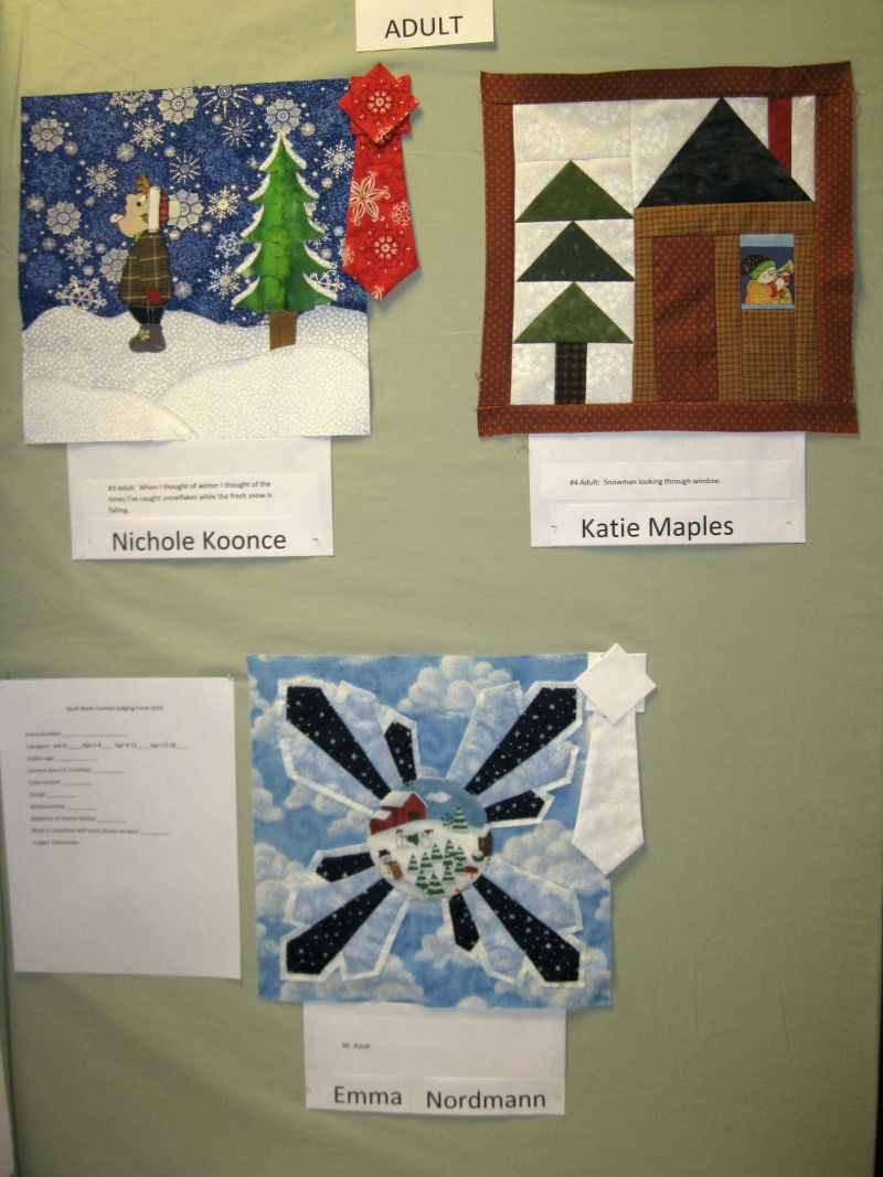 Quilt Block Contest Entries Adults